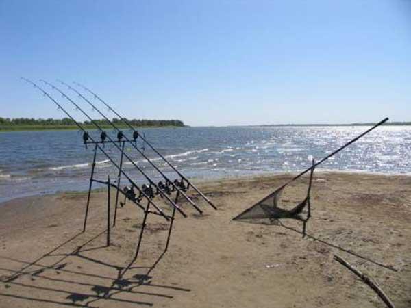 рыболовная база в ленино