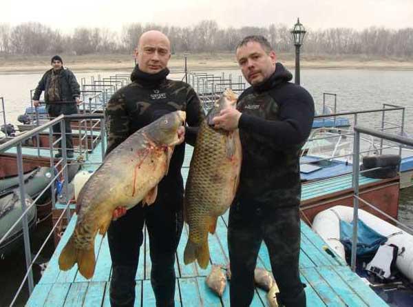 рыбалка в завидном видео