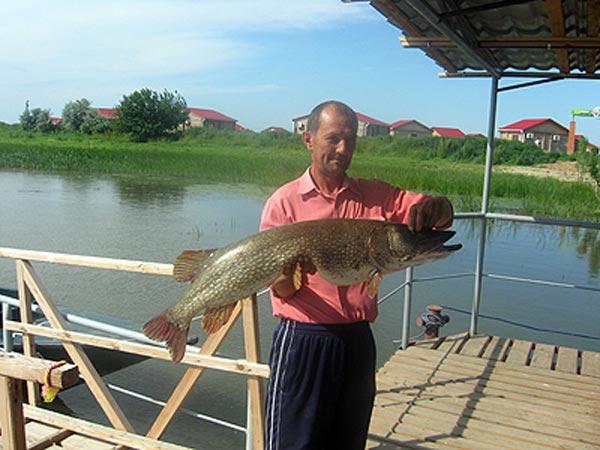 рыболовная база отдыха рыбалкино