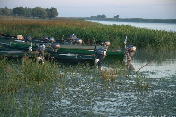 рыболовные кемпинги в астраханской области