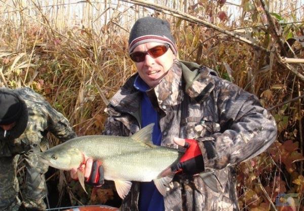 видео трофеи рыболовов
