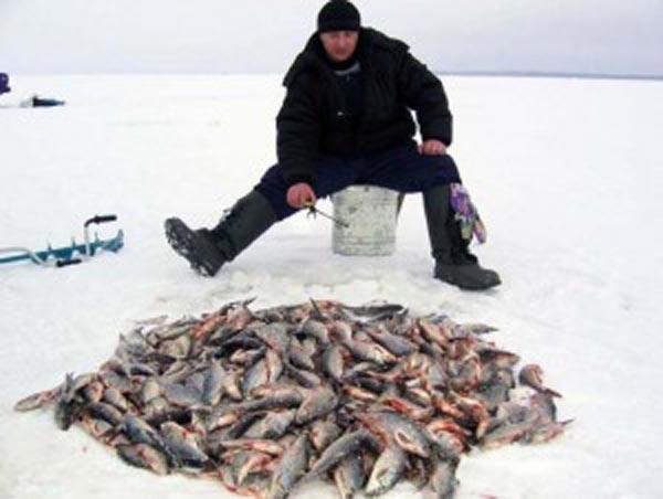 рыболовный поклевка  рыбхоз