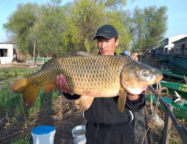 рыболовно охотничий