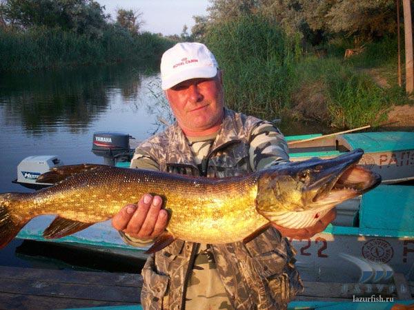 рыбалка на базе лиманская