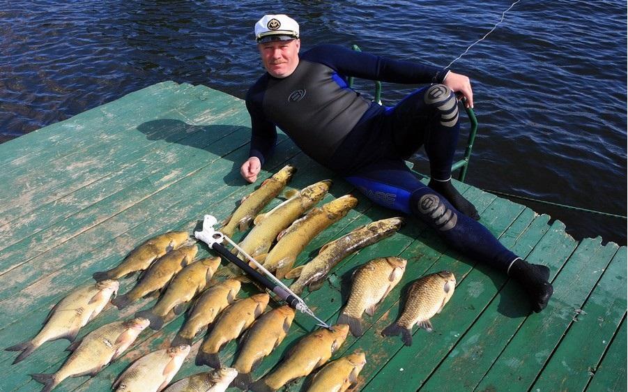 рыболовная база динамо на раскатах официальный сайт